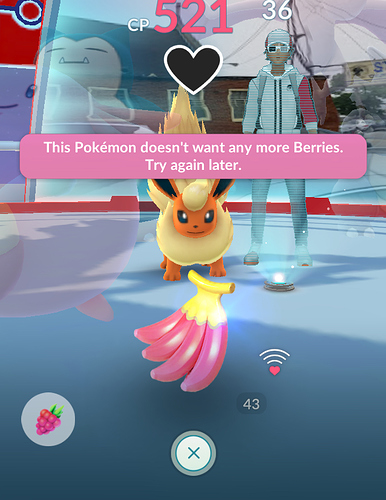 Cant berry pokemon support go hub forum altavistaventures Choice Image